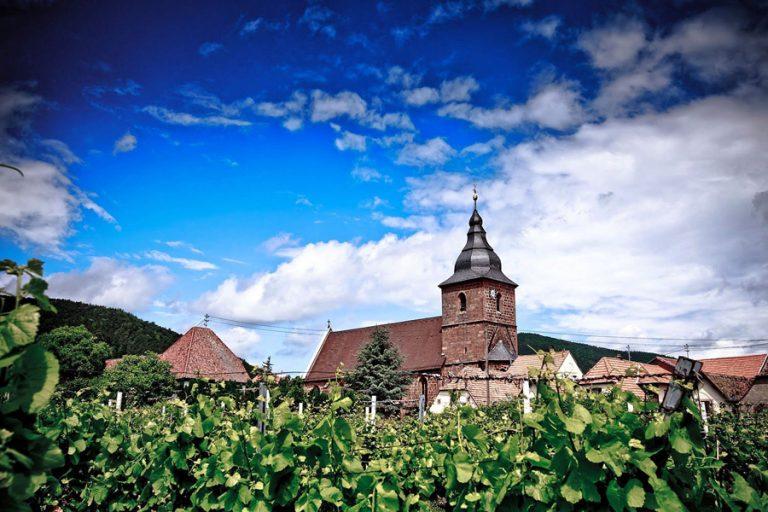 0178-Hochzeitsfotograf-Schwetzingen